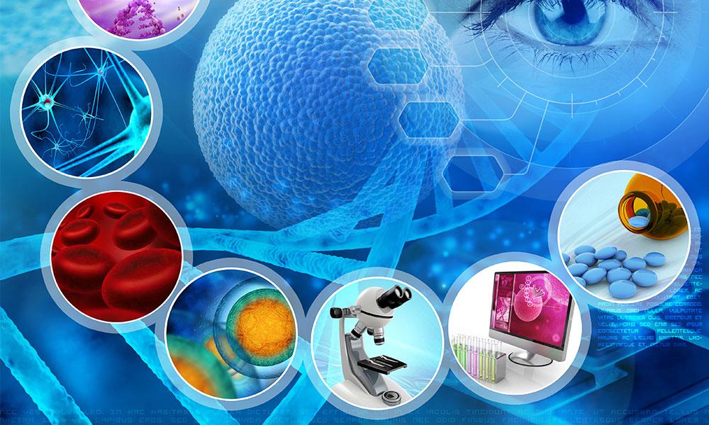 Forskning og lenker : Nevralterapi : PainFree Clinic Sandefjord